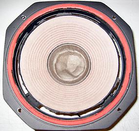 defektes Lautsprecher-Chassis